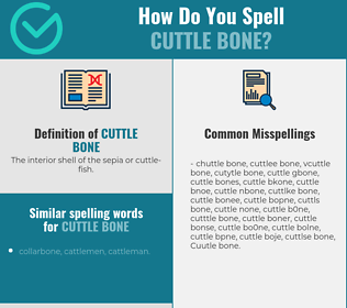 Correct spelling for Cuttle bone