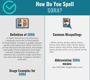 Correct spelling for Sora