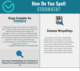 Correct spelling for Stromata