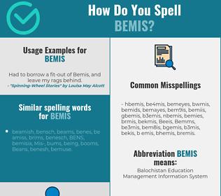 Correct spelling for Bemis