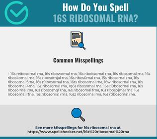 Correct spelling for 16S Ribosomal RNA