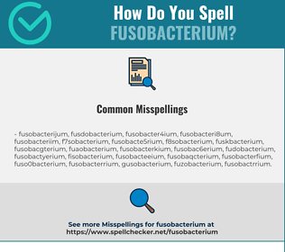 Correct spelling for Fusobacterium
