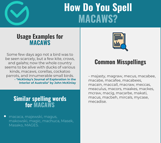 Correct spelling for macaws