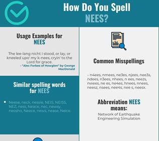 Correct spelling for NEES [Infographic]   Spellchecker net