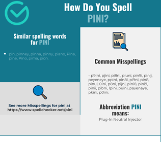 Correct spelling for PINI