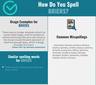 Correct spelling for briers