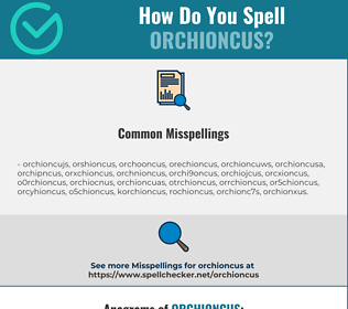 Correct spelling for orchioncus
