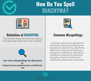 Correct spelling for Diachyma