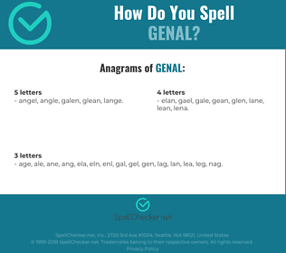 Correct spelling for genal