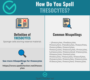 Correct spelling for thesocytes