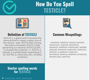 Correct spelling for testicle