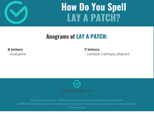 Correct spelling for lay a patch