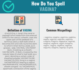 Correct spelling for vagina