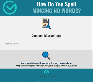Correct spelling for mincing no words