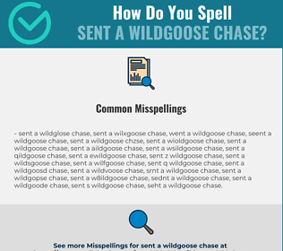 Correct spelling for sent a wildgoose chase