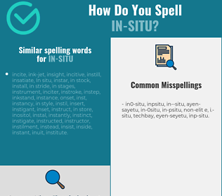 Correct spelling for in-situ