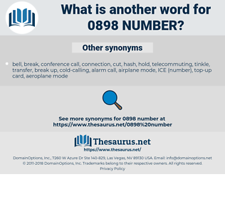 0898 number, synonym 0898 number, another word for 0898 number, words like 0898 number, thesaurus 0898 number