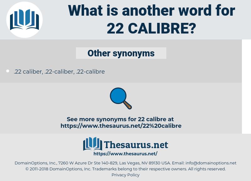 22 calibre, synonym 22 calibre, another word for 22 calibre, words like 22 calibre, thesaurus 22 calibre