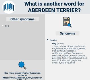 Aberdeen terrier, synonym Aberdeen terrier, another word for Aberdeen terrier, words like Aberdeen terrier, thesaurus Aberdeen terrier
