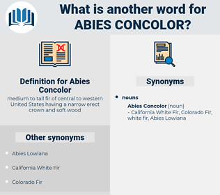 Abies Concolor, synonym Abies Concolor, another word for Abies Concolor, words like Abies Concolor, thesaurus Abies Concolor