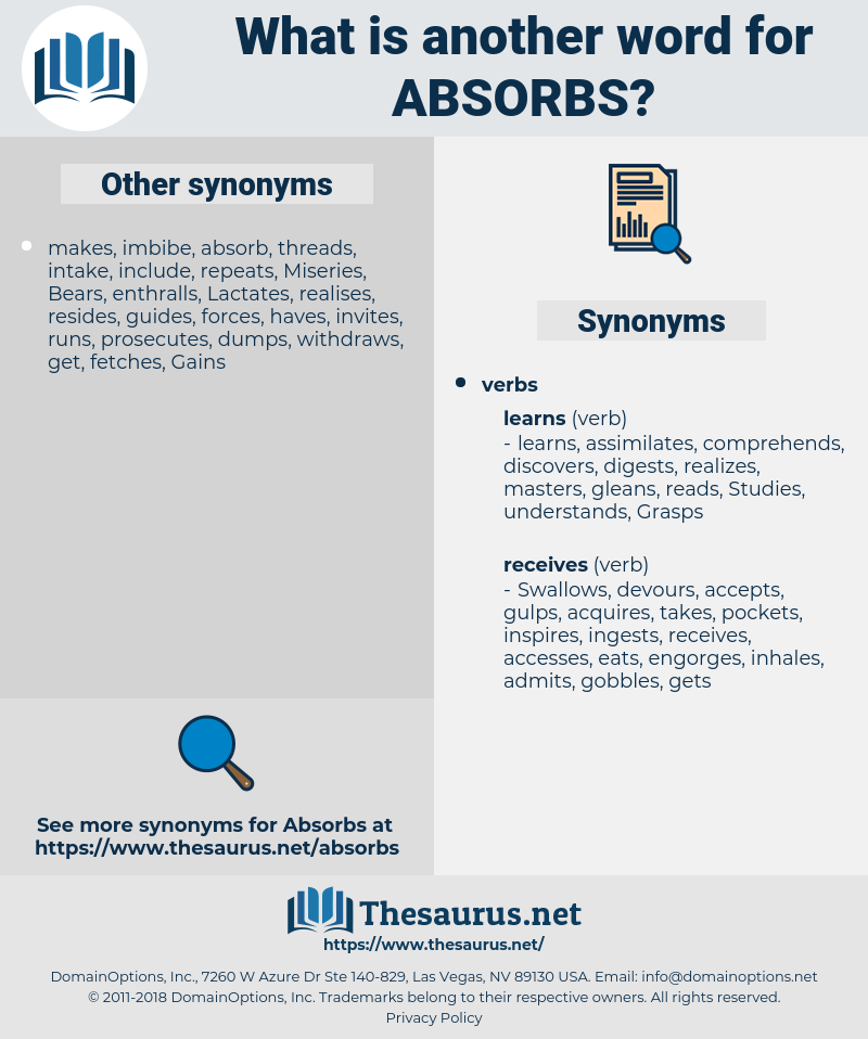 absorbs, synonym absorbs, another word for absorbs, words like absorbs, thesaurus absorbs