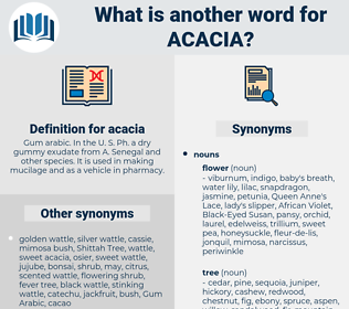 acacia, synonym acacia, another word for acacia, words like acacia, thesaurus acacia