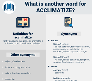 acclimatize, synonym acclimatize, another word for acclimatize, words like acclimatize, thesaurus acclimatize