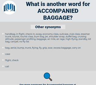 accompanied baggage, synonym accompanied baggage, another word for accompanied baggage, words like accompanied baggage, thesaurus accompanied baggage