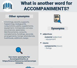accompaniments, synonym accompaniments, another word for accompaniments, words like accompaniments, thesaurus accompaniments