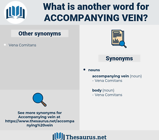 accompanying vein, synonym accompanying vein, another word for accompanying vein, words like accompanying vein, thesaurus accompanying vein