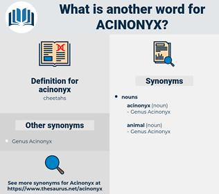 acinonyx, synonym acinonyx, another word for acinonyx, words like acinonyx, thesaurus acinonyx