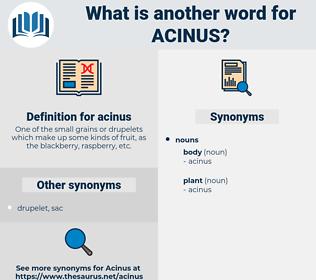acinus, synonym acinus, another word for acinus, words like acinus, thesaurus acinus