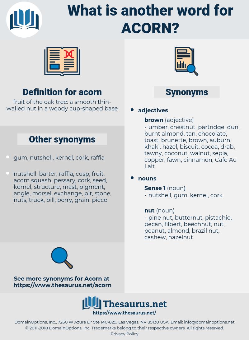acorn, synonym acorn, another word for acorn, words like acorn, thesaurus acorn