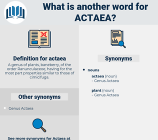 actaea, synonym actaea, another word for actaea, words like actaea, thesaurus actaea