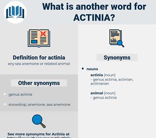 actinia, synonym actinia, another word for actinia, words like actinia, thesaurus actinia