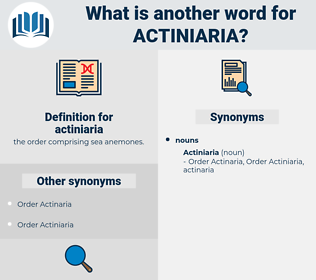 actiniaria, synonym actiniaria, another word for actiniaria, words like actiniaria, thesaurus actiniaria