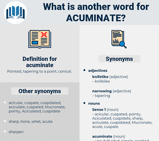 acuminate, synonym acuminate, another word for acuminate, words like acuminate, thesaurus acuminate