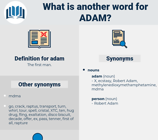 adam, synonym adam, another word for adam, words like adam, thesaurus adam