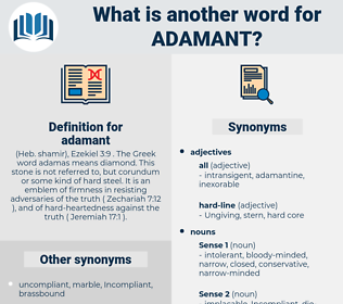 adamant, synonym adamant, another word for adamant, words like adamant, thesaurus adamant