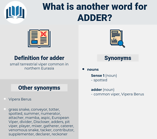 adder, synonym adder, another word for adder, words like adder, thesaurus adder