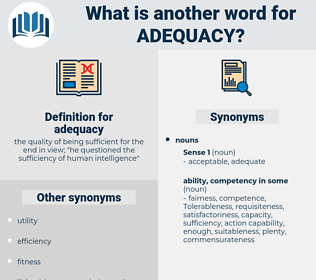 adequacy, synonym adequacy, another word for adequacy, words like adequacy, thesaurus adequacy