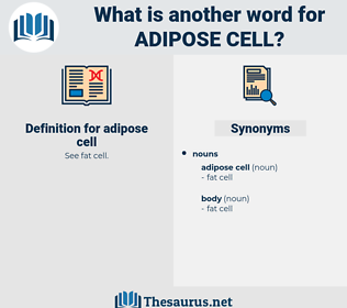 adipose cell, synonym adipose cell, another word for adipose cell, words like adipose cell, thesaurus adipose cell