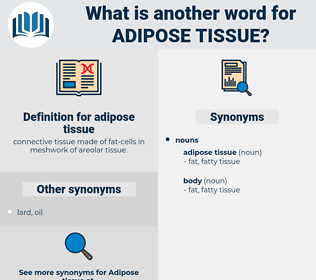 adipose tissue, synonym adipose tissue, another word for adipose tissue, words like adipose tissue, thesaurus adipose tissue