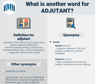 adjutant, synonym adjutant, another word for adjutant, words like adjutant, thesaurus adjutant