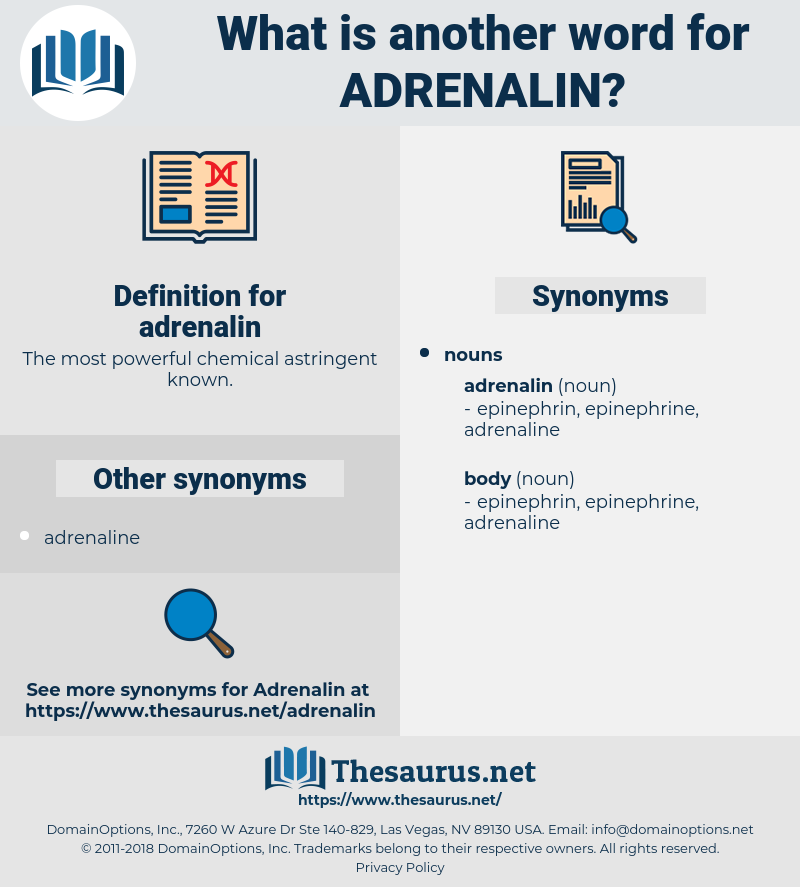adrenalin, synonym adrenalin, another word for adrenalin, words like adrenalin, thesaurus adrenalin