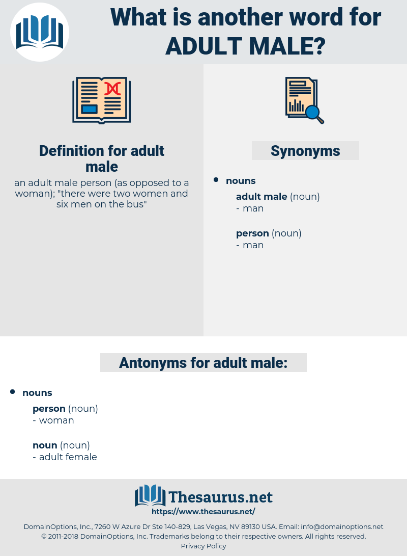 adult male, synonym adult male, another word for adult male, words like adult male, thesaurus adult male