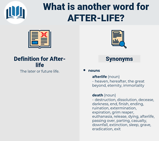 after life, synonym after life, another word for after life, words like after life, thesaurus after life