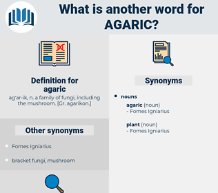 agaric, synonym agaric, another word for agaric, words like agaric, thesaurus agaric