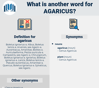 agaricus, synonym agaricus, another word for agaricus, words like agaricus, thesaurus agaricus