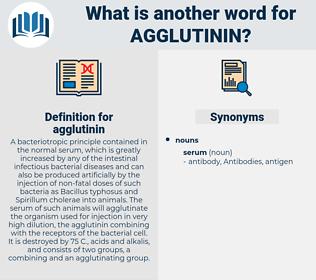 agglutinin, synonym agglutinin, another word for agglutinin, words like agglutinin, thesaurus agglutinin